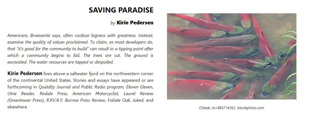Saving Paradise, Kirie Pedersen, in Still Point Artists Quarterly